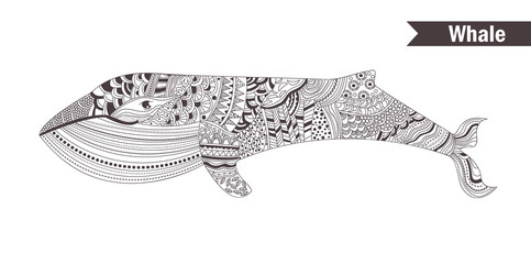 Whale. coloring book