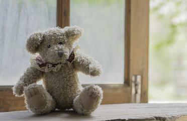 Teddy bear sit and waiting at the window.
