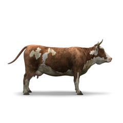 Cow on white background isolated 3d rendering