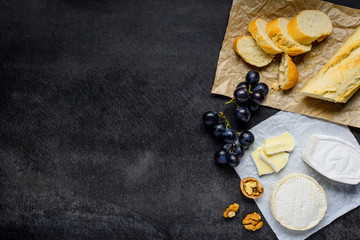 Brie and Camembert Cheese with Copy Space