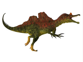 Ichthyovenator Dinosaur Body - Ichthyovenator was a theropod spinosaur dinosaur that lived in Laos, Asia in the Cretaceous Period.