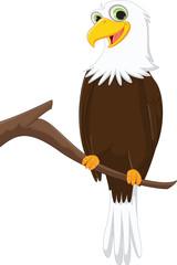 funny cartoon eagle on a tree branch