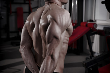 Bodybuilder posing in gym. Perfect muscular male back
