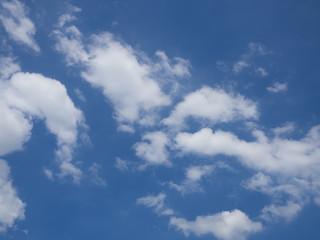 Wall Mural - cloudy blue sky