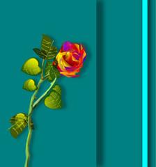 Rosa, illustrazione floreale, progetto biglietto auguri.