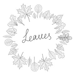 Leaves silhouette set