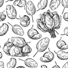 Spinach bunch and leaves hand drawn vector seamless pattern. Iso