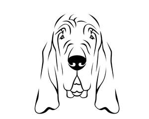 Dog Breed Line Art Logo - Bloodhound