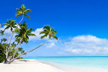 Sommer, Sonne, Strand und Meer als Hintergrund