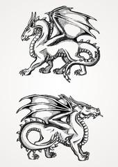 Two big dragon contour line