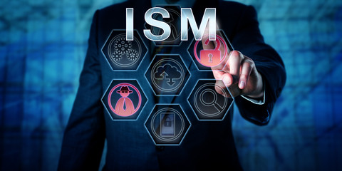 Male Computer Security Specialist Touching ISM