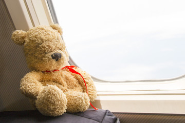 Bear is sitting by window on the aircraft