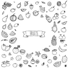 Hand drawn doodle fruits icons set Vector illustration seasonal fruits symbols collection Cartoon different kinds of fruits Various types of tropical fruits on white background Sketch style Fruit eps
