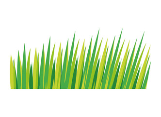 Nature grass concept. leaves  icon. vector graphic