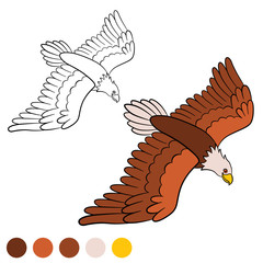 Coloring page. Color me: eagle. Cute bald eagle flying.