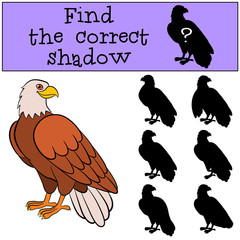 Children games: Find the correct shadow. Cute bald eagle smiles.