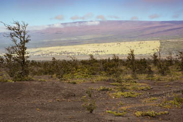 Looking at the slopes of Mauna Loa seen from the Jaggar Museum.