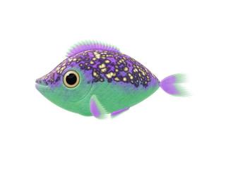 purple green fish