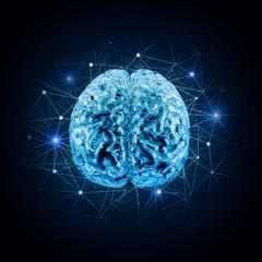 conceptual model of brain