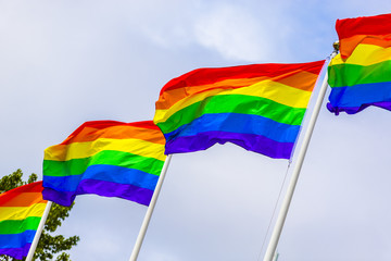 Rainbow Flags