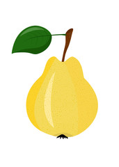 Yellow pear on a white background
