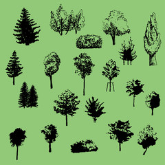 large set of vector silhouettes of trees