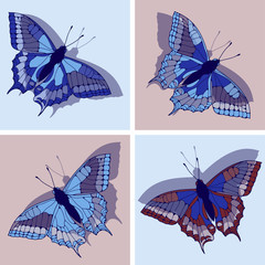 a set of four butterfly illustrations in blue and red shades