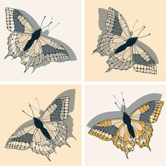a set of four butterfly illustrations in yellow and silver shades