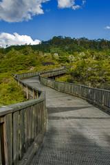 Walkway to Whakarewarewa Geyser at Te Puia thermal park in geothermal valley of Rotorua, New Zealand