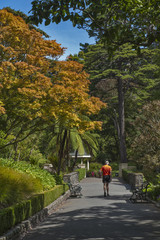 Visitors resting at Wellington Botanic Garden, New Zealand
