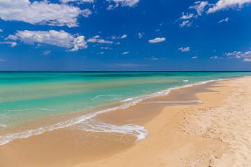Amazing golden sand beach near Monopolli Capitolo, clear sky summer day, Apulia region, Southern Italy