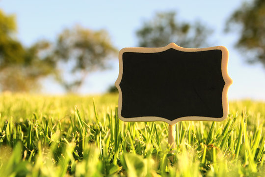 empty wooden sign in the forest, garden or park