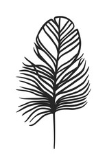 Decorative black feather vector.