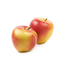 Ripe red and golden jonagold apple