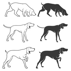 Set of hunting dogs illustrations.