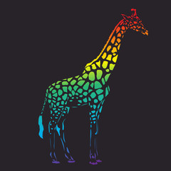 Vector raibow giraffe silhouette, abstract animal illustration. Safari giraffe can be used for background, card, print materials