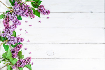 lilac flowers on white wooden background, frame, top view, flat lay