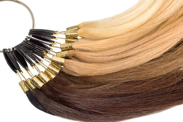 Premium hair extension palette with color samples from blonde to