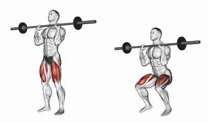 Squats on his chest. Exercising for bodybuilding Target muscles are marked in red. Initial and final steps. 3D illustration