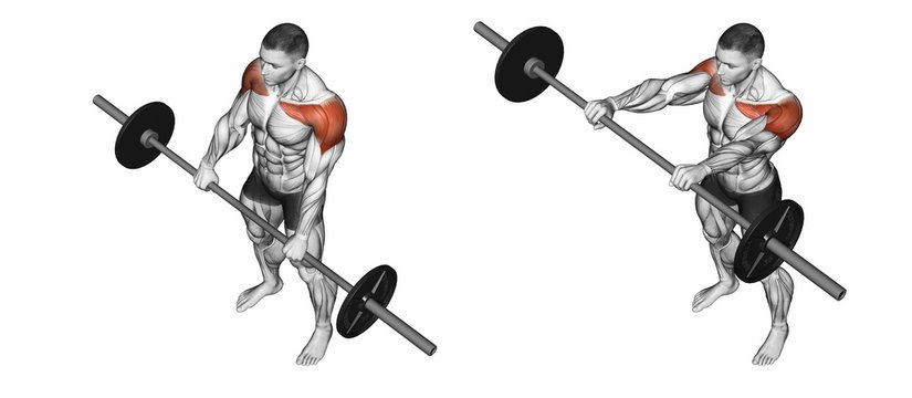 Lifts forward. Exercising for bodybuilding. Target muscles are marked in red. Initial and final steps. 3D illustration