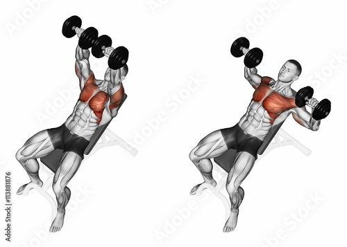 Dumbbell bench press while lying on an incline bench exercising for bodybuilding target - Developpe incline avec halteres ...