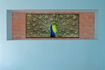 decorated brick wall with photo frame