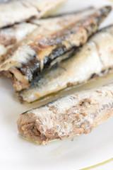 Close up macro marinated sardines served on the plate