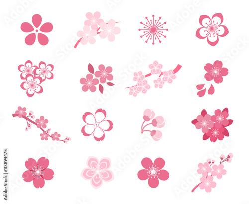 Wall mural Cherry blossom japanese sakura vector icon set