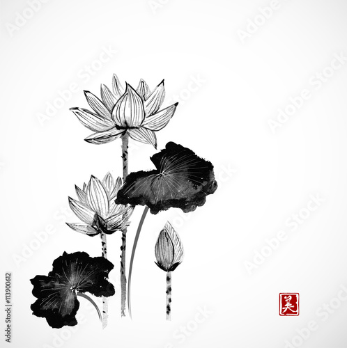 Lotus flowers hand drawn with ink on white background traditional lotus flowers hand drawn with ink on white background traditional japanese ink painting sumi mightylinksfo