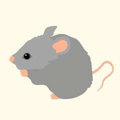 young gray mouse sits isolated vector illustration