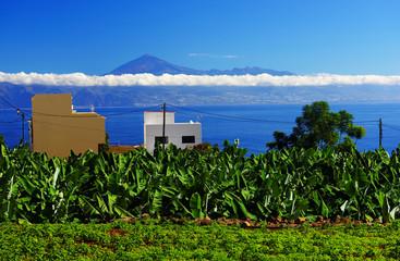 Agulo in La Gomera, Spain, Europe