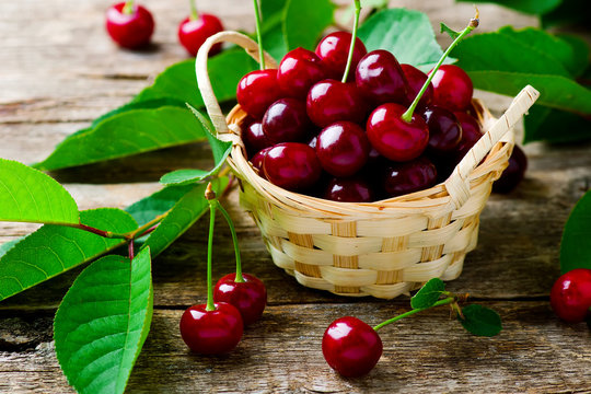 Ripe cherries in a basket