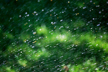 Background. Rain. Raindrops. The image is blurred with bokeh.