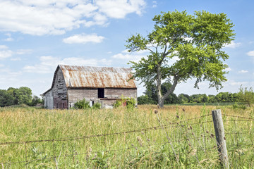 Old Friends - A rustic old barn stands by a weathered old tree in rural Madison County, Ohio.